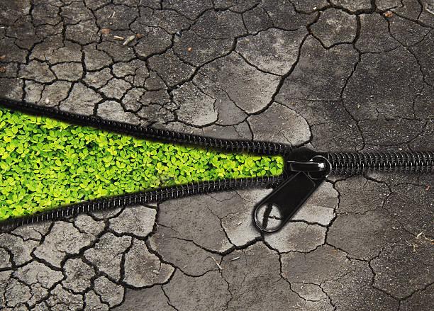environmentally friendly concept : change the arid soil to green stock photo