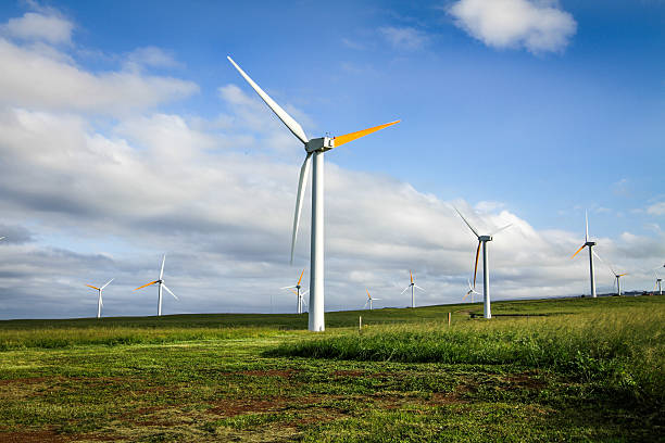 Environmentally friendly wind turbines Environmentally friendly wind turbines creating clean energy. neicebird stock pictures, royalty-free photos & images