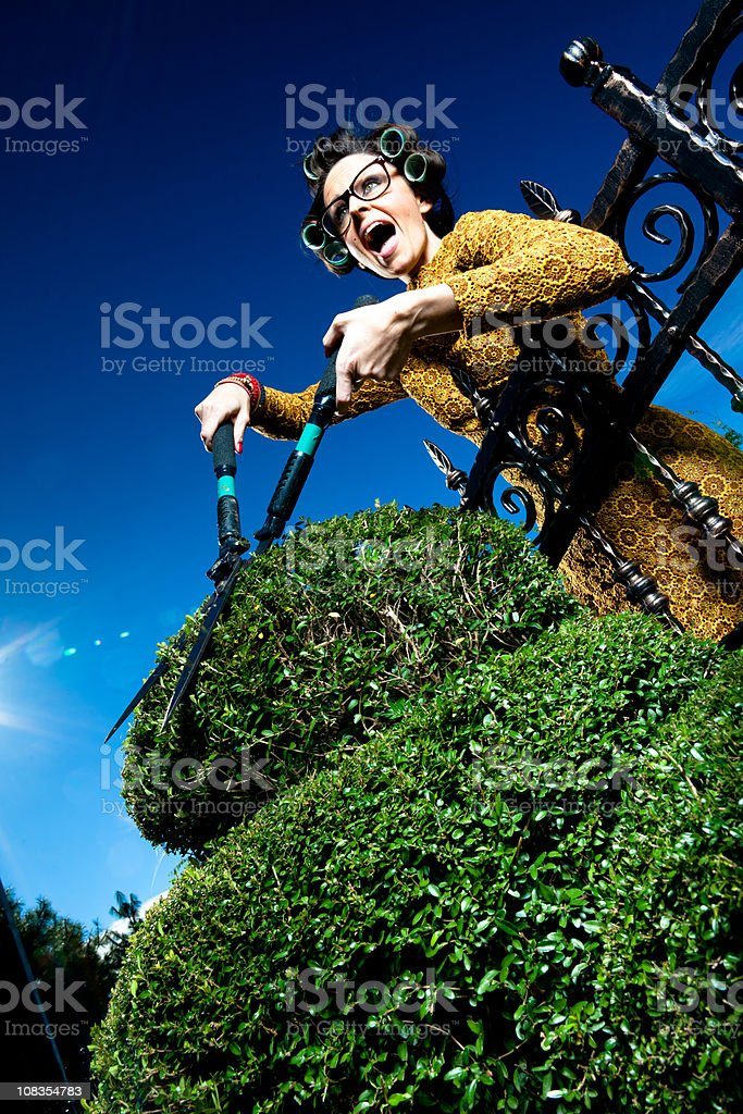 Envy housewife stock photo