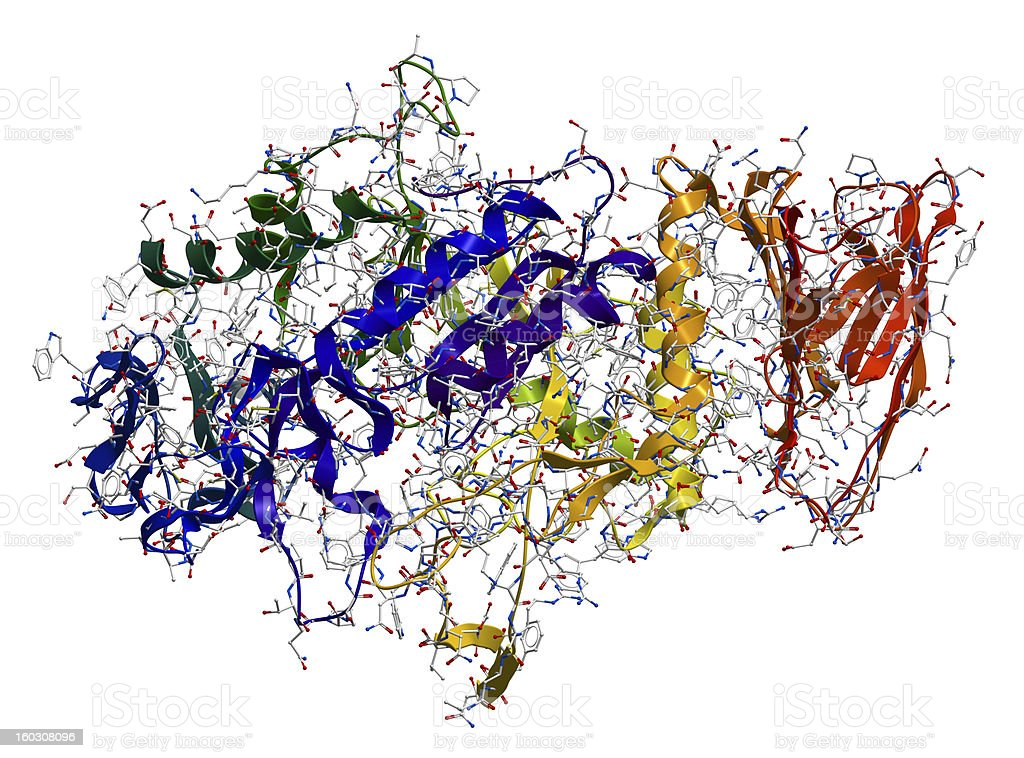 Enzyme Alpha-Amylase 3D molecular structure stock photo