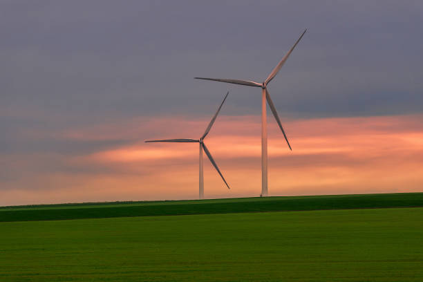 Eolian turbines used to produce green energy seen from a wheat field stock photo