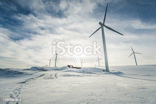 Eolic turbines for wind power industry: technicians doing maintenance