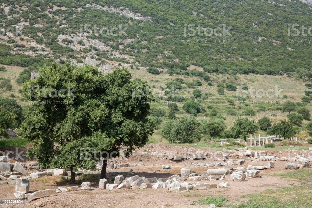 Ephesus Ancient City in Turkey photo libre de droits