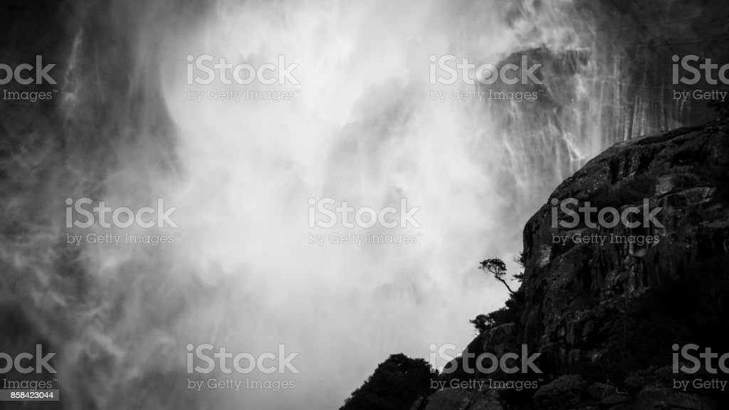 Epic inspiring lone tree in Yosemite falls getting splashed by the waterfall behind it stock photo