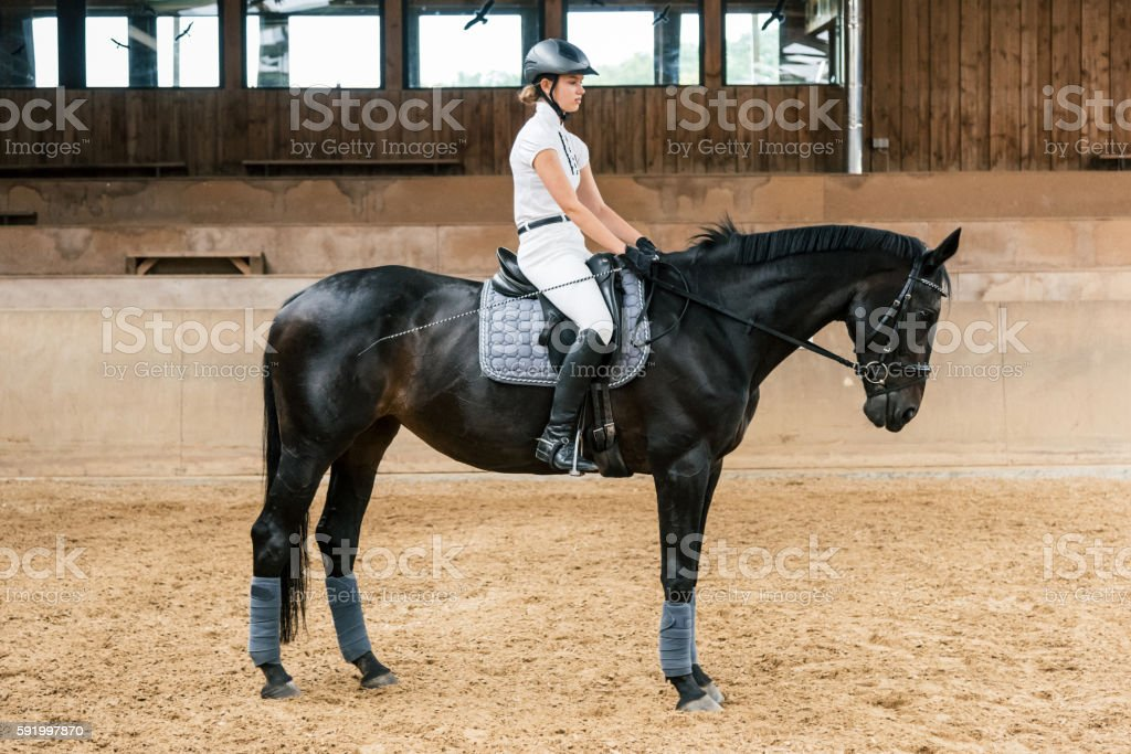 Equestrian Hall Teenage Girl Dressage Riding stock photo