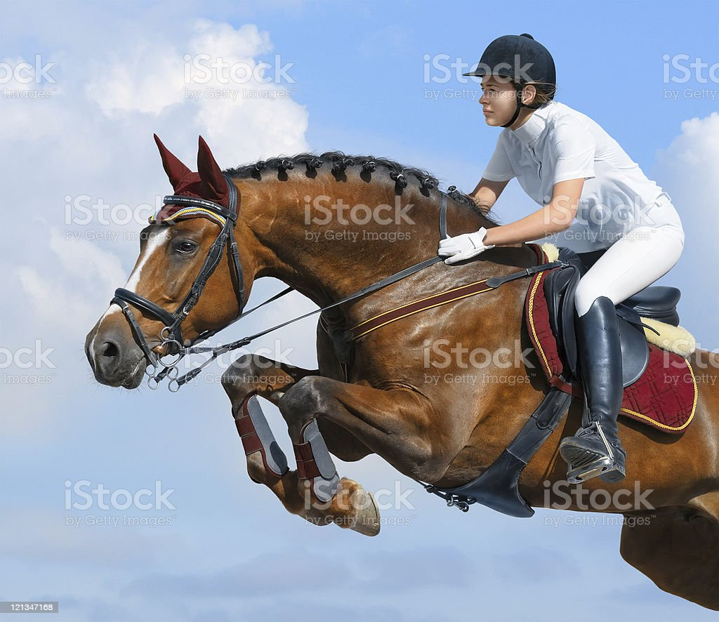 Reiter-jumper horsewoman und bay mare – Foto