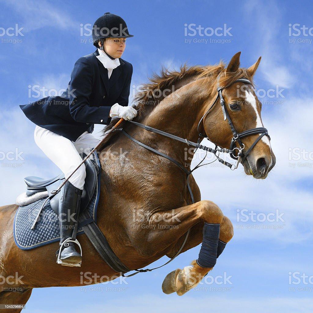 Equestrian-Pullover – Foto