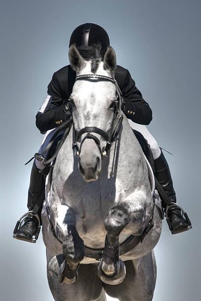 equestrian jumper - hästhoppning bildbanksfoton och bilder