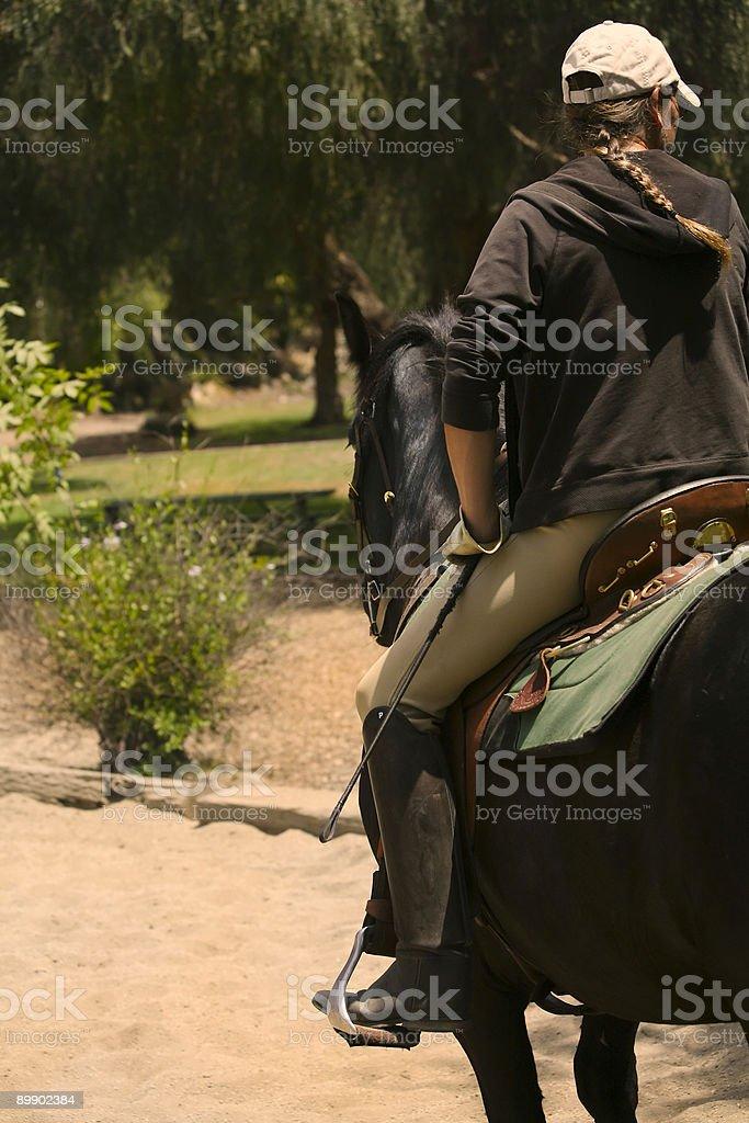 Serie de equitación foto de stock libre de derechos