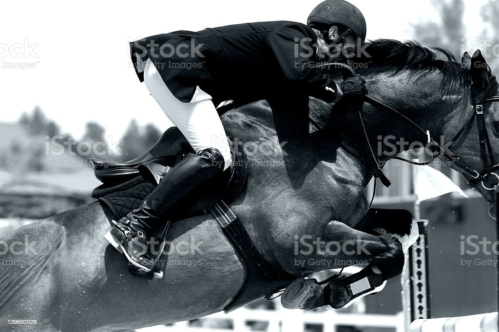 Equestrian Show Jumping Close-up (BW) stock photo