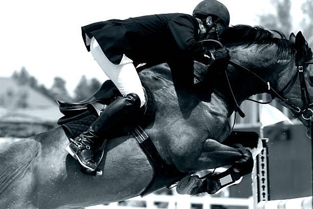 equestrian show jumping close-up (bw) - hästhoppning bildbanksfoton och bilder