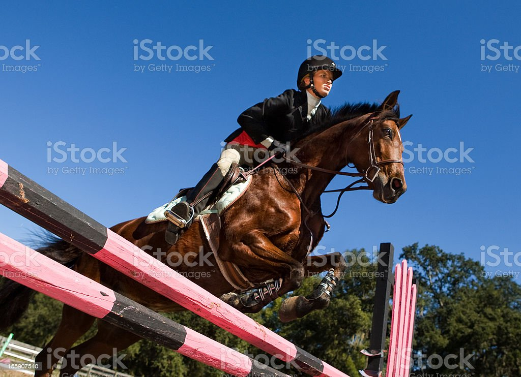 Equestrian show jumping stock photo