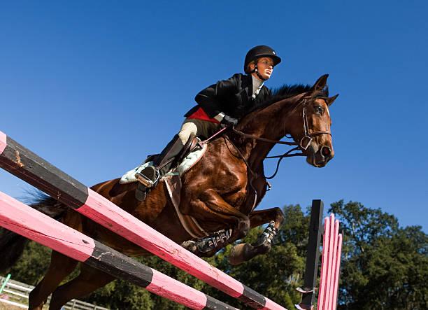 エクエストリアン障害飛越 - 乗馬 ストックフォトと画像