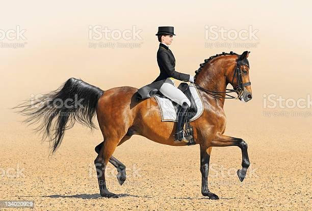 Equestrian sport dressage picture id134020929?b=1&k=6&m=134020929&s=612x612&h=ktv4pomih4nilmcq2ldhuehcqiii9oeqh1grr dutqo=