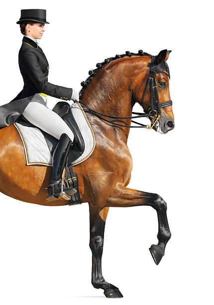 Equestrian sport dressage picture id134120003?b=1&k=6&m=134120003&s=612x612&w=0&h=sjwn4 xqn7kdy3quomidmlwm2v99wa6mf3cgjr9smjq=