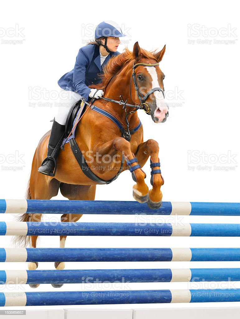 Equestrian sport - show jumping (young woman and sorrel stallion stock photo