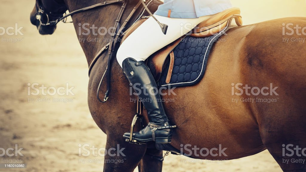 Equestrian Sport The Leg Of The Rider In The Stirrup Riding On A Red Horse Stock Photo Download Image Now Istock