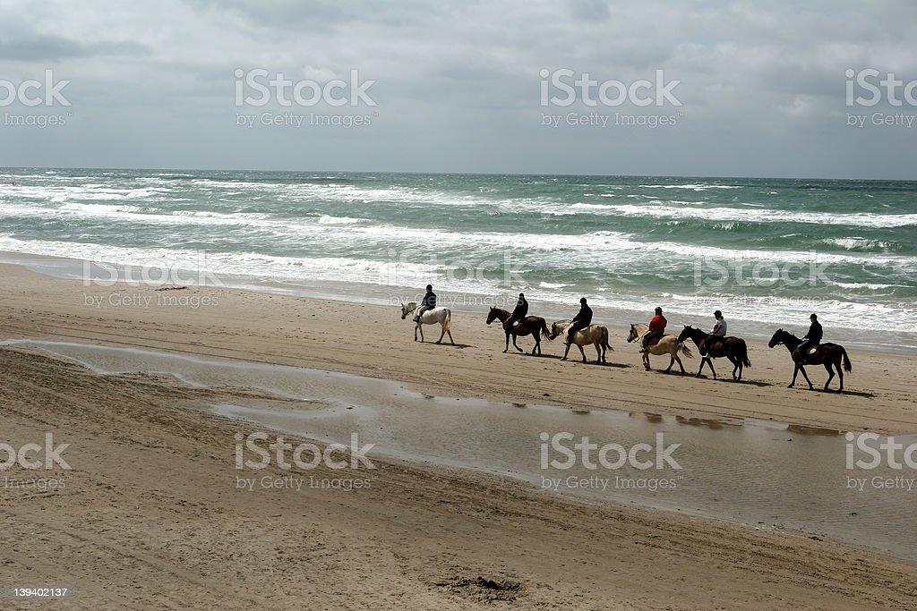 equine beach royalty-free stock photo