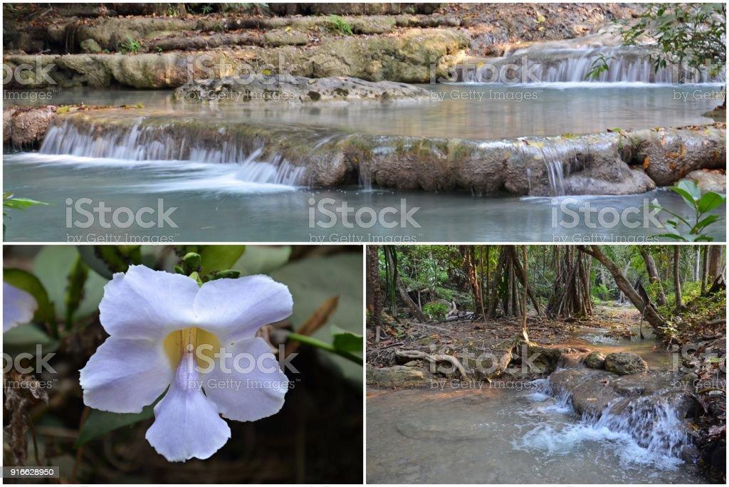 erawan national park nature stock photo