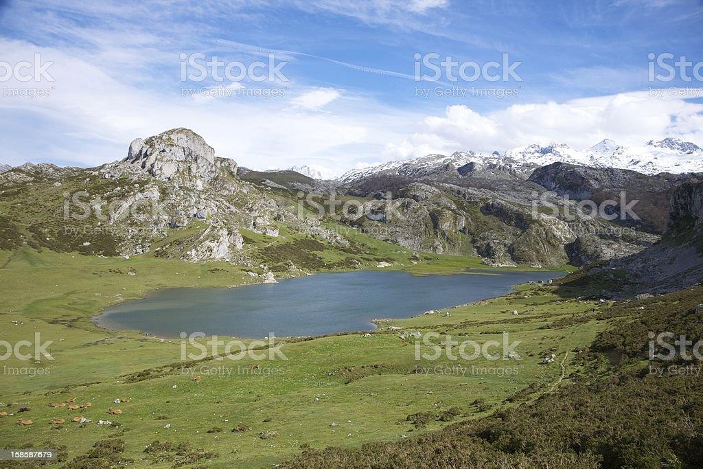 Ercina lake in Asturias royalty-free stock photo