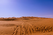 In places, the dunes of Erg Chebbi rise up to 150 meters from the surrounding hamada (rocky desert) and altogether it spans an area of 28 kilometers from north to south and up to 5–7 kilometers from east to west lining the Algerian border.