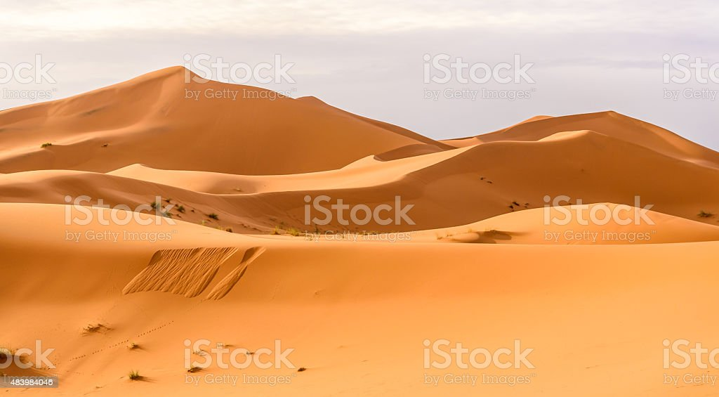 Erg Chebbi sand dunes in the Moroccan desert stock photo