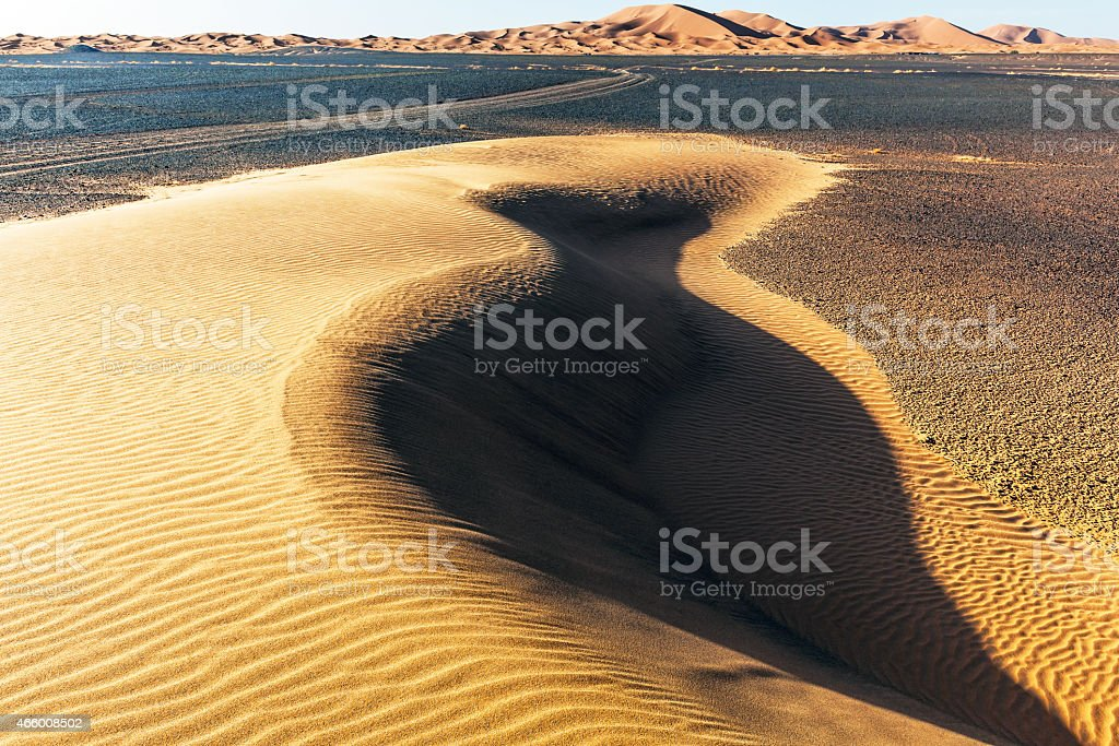 Sand dunes in Erg Chebbi desert,Sahara, Morocco, Africa.Nikon D3x
