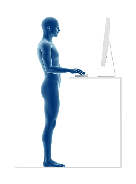 ergonomia, właściwą postawę do pracy stałego - poprawna postawa zdjęcia i obrazy z banku zdjęć