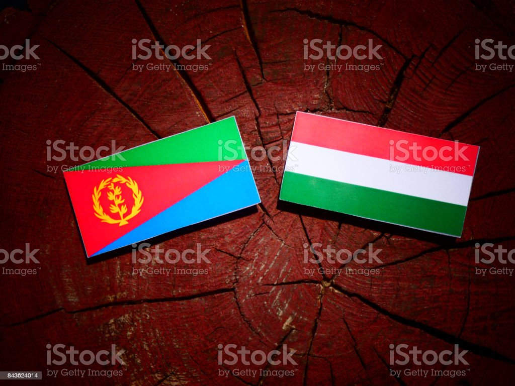 Eritrean flag with Hungarian flag on a tree stump isolated stock photo