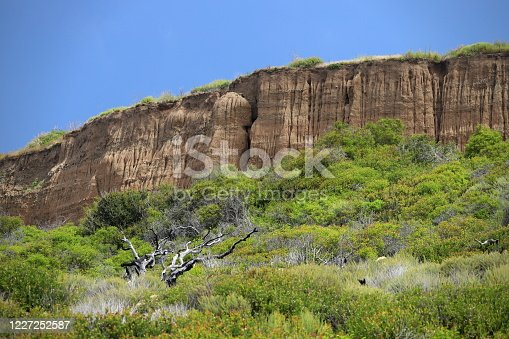 Interesting geological formations, with bright green foliage, and a blue sky along the southern California coast.