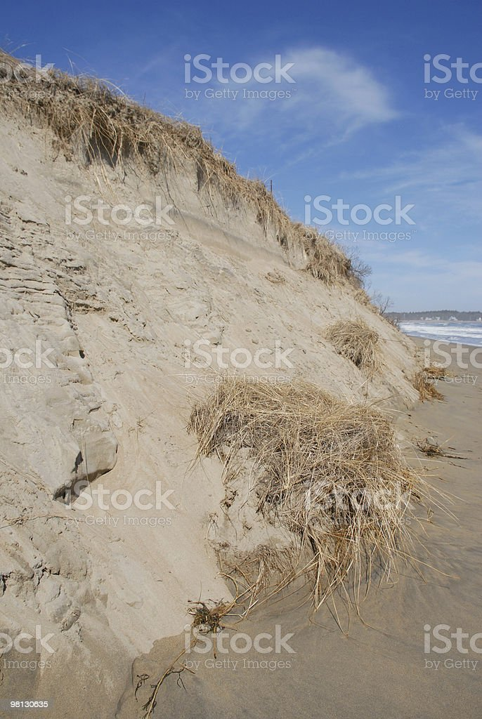 Eroding sand dune protects Popham Beach in Maine royalty-free stock photo