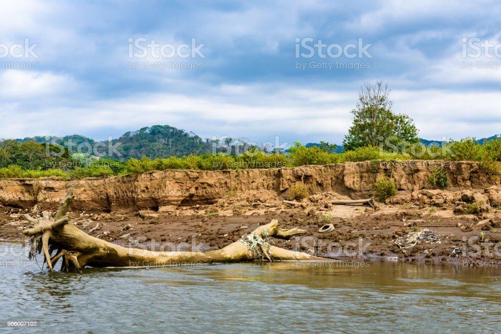Erosie en verontreiniging - Royalty-free Afval Stockfoto