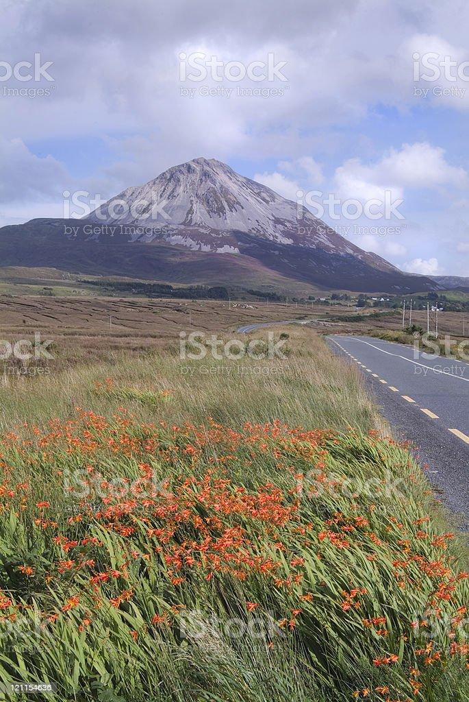 Errigal Mountain portrait stock photo