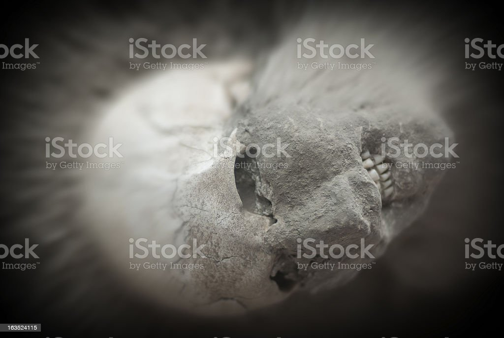 eruption victim of Vesuvius in Pompeii royalty-free stock photo