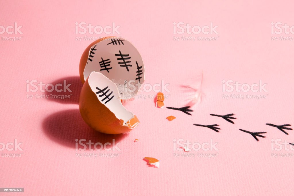 escape from egg stock photo