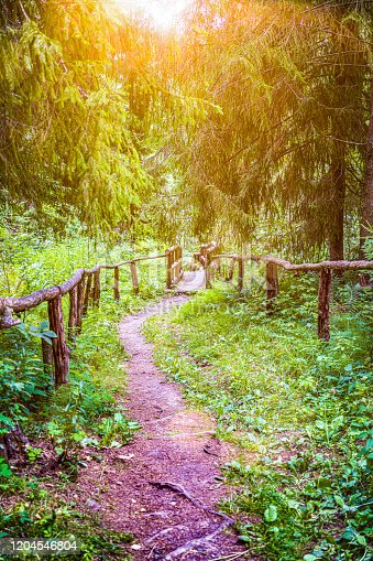 470521655 istock photo Escape route to nature 1204546804