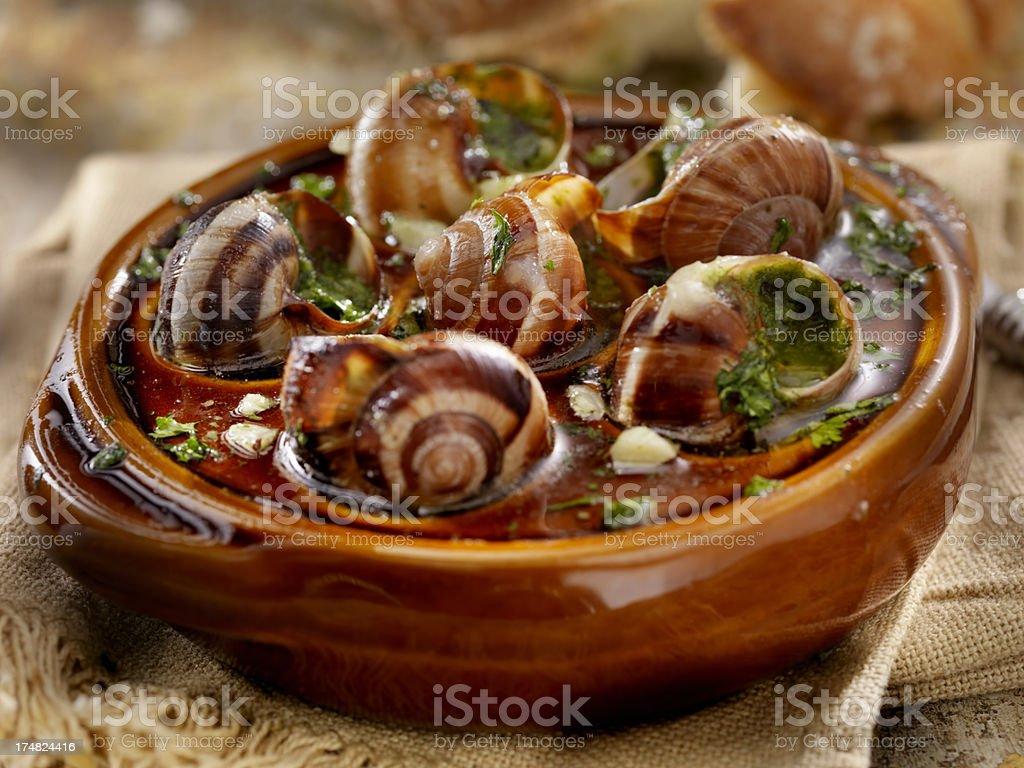 Escargot royalty-free stock photo
