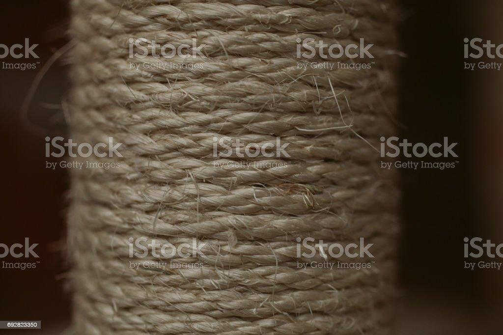 Esparto grass texture. Esparto background. Close up view of esparto texture and background. Abstract background and texture for designers. stock photo