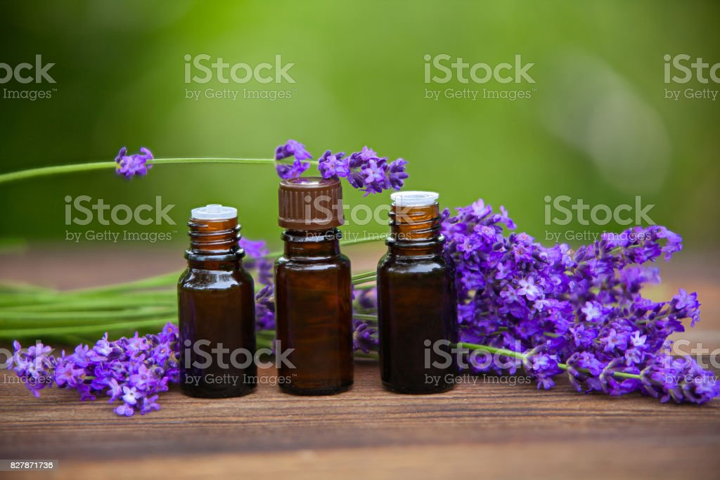 Essence of lavender flowers on table in beautiful glass jar stock photo