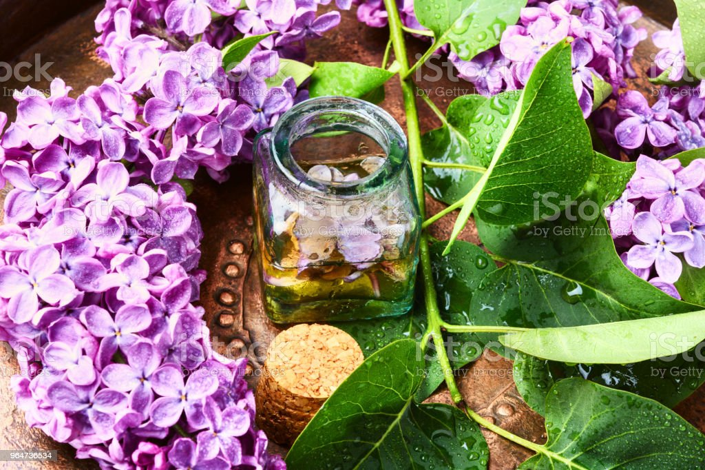 Essence of lilac flowers royalty-free stock photo