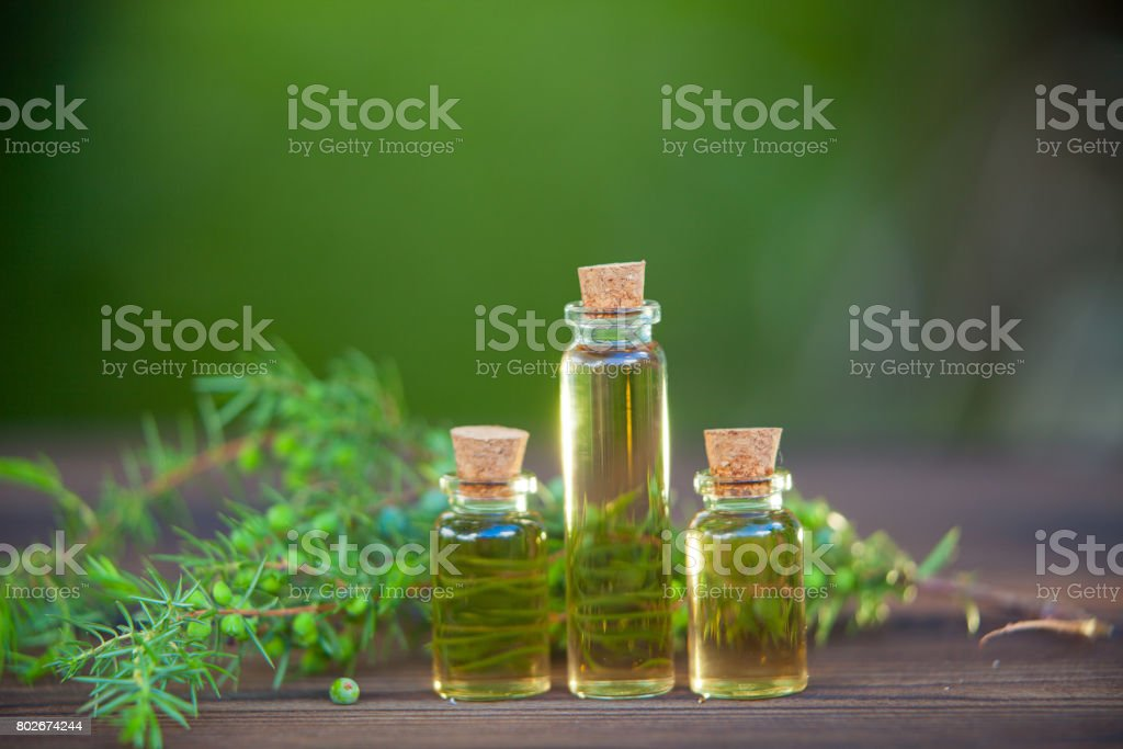 Essence of pine on table in beautiful glass jar stock photo