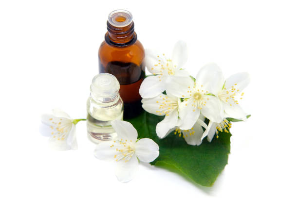 Essential aroma oil with jasmine flowers on white stock photo