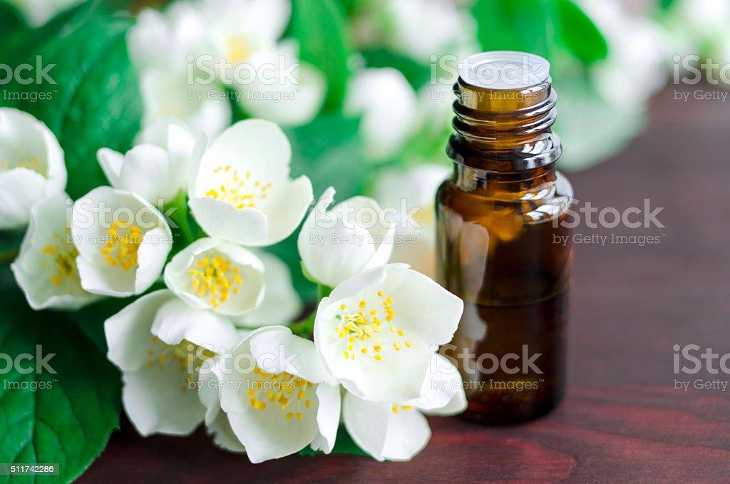 Essential jasmine oil stock photo