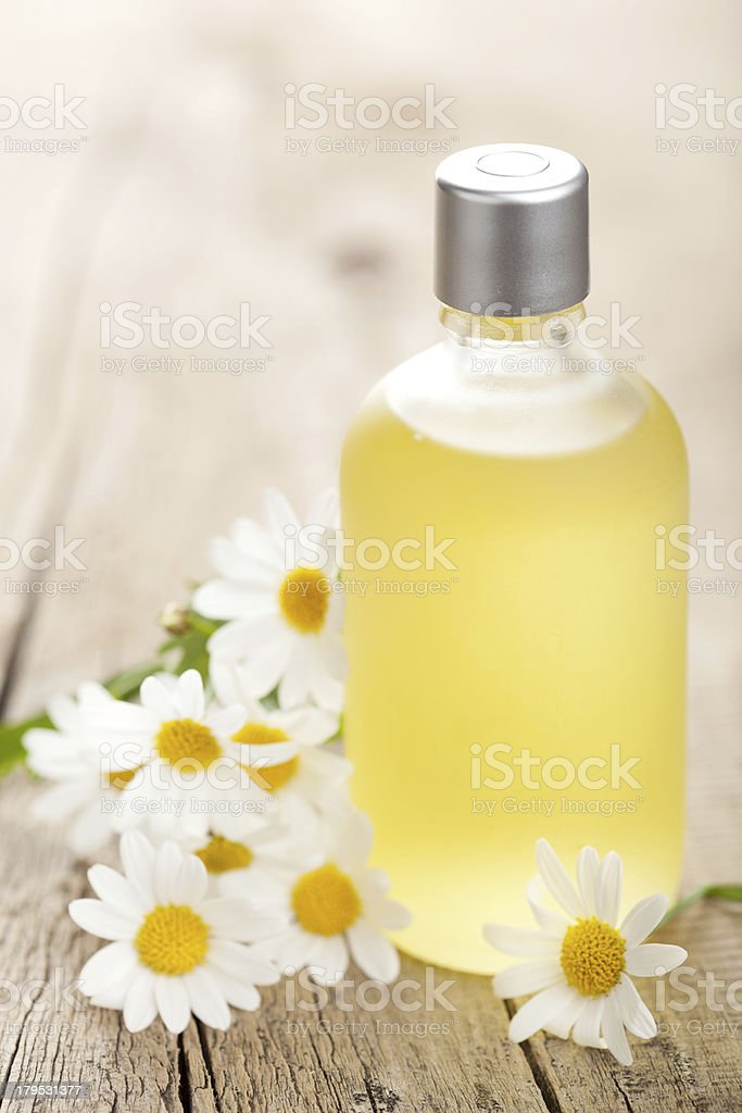 essential oil and chamomile flowers royalty-free stock photo