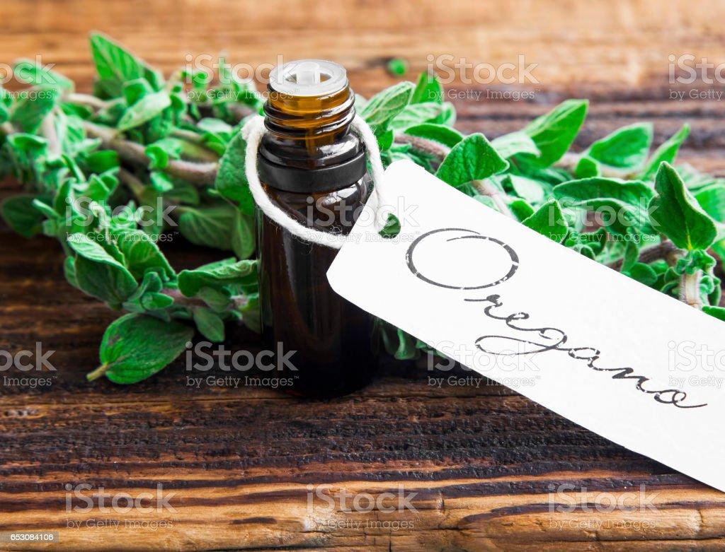 Essential oil bottle of oregano herb with fresh oregano leaves stock photo