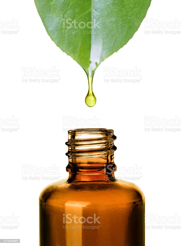 Essential oil dropping from leaf to bottle. .Aromatherapy. stock photo