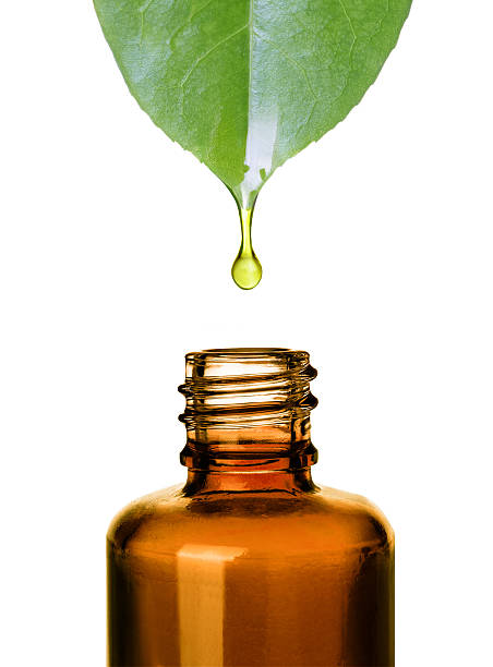 essential oil dropping from leaf to bottle. .aromatherapy. - serum stock photos and pictures