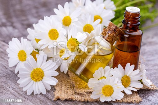 Essential oil in glass bottle with fresh chamomile flowers, beauty treatment.