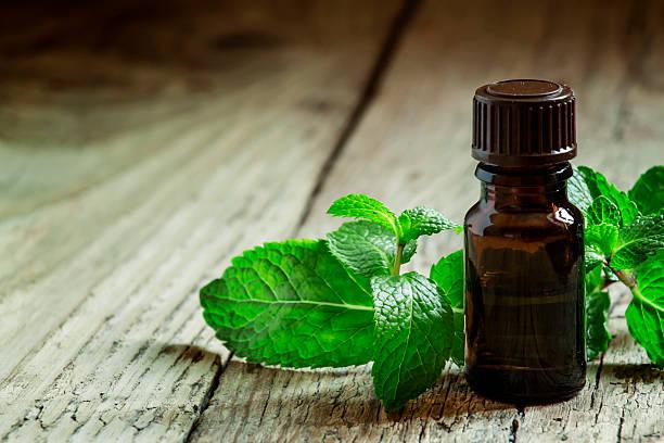 essential oil of peppermint in a small brown bottle - i̇ngiliz nanesi stok fotoğraflar ve resimler