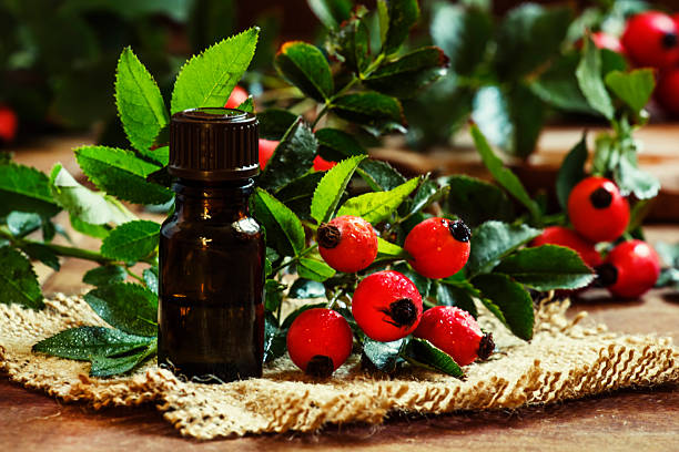 Essential oil of rosehip and fresh berries Essential oil of rosehip and fresh berries and leaves, small bottle on canvas. Dark wood background, selective focus dog rose stock pictures, royalty-free photos & images